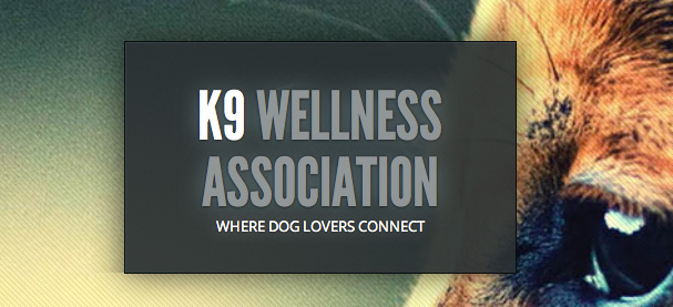 K9 Wellness Association featured Bailey's Blend in All Natural Pet Health Book